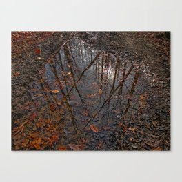 Valley Falls Leaves Canvas Print