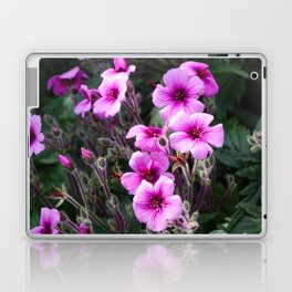 Beauty on The Rock Laptop & iPad Skin