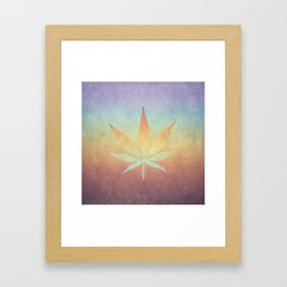 Cannabis sativa Framed Art Print