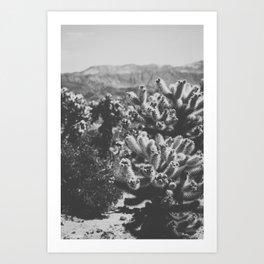 Chollo Cactus Garden (Black + White) Art Print