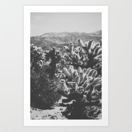 Chollo Cactus Garden (Black + White) Art Print