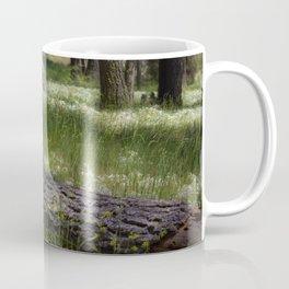 Mt. Laguna San Diego Ca Coffee Mug