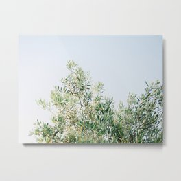 The olive tree | Italy fine art travel photography | Ostuni art Metal Print