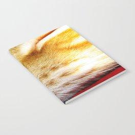 No Day Is So Bad It Can't Be Fixed With A Nap. Notebook