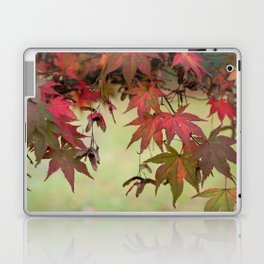 Maple Leaves Laptop & iPad Skin