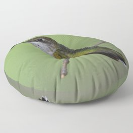 Ruby Throated Humming Bird At Rest Floor Pillow