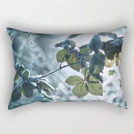 Freezing over Rectangular Pillow