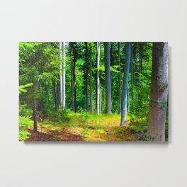 can´t find no mushroom  Metal Print