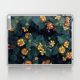 Beautiful flowers over my neighborhood Laptop & iPad Skin