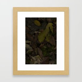 BEAUTIFALLEN SOLDIERS Framed Art Print