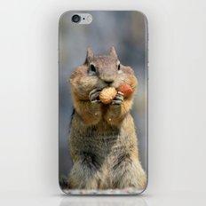 Peanuts iPhone & iPod Skin