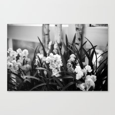 Flower s FPC Canvas Print