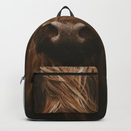 Scottish Highland Cattle Backpack