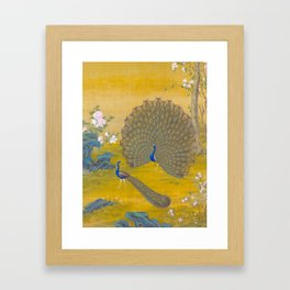 Peacock spreading its tail feathers - Lang Shining (Giuseppe Castiglione, 1688-1766 Framed Art Print