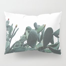 Fruit Cactus Desert Pillow Sham