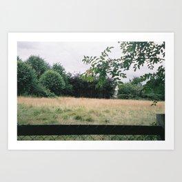 P_04 Art Print
