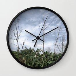 sunny day tropical Wall Clock