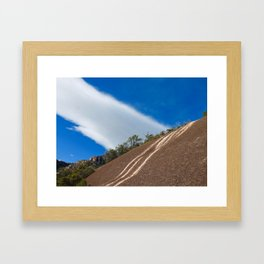Nature's Patterns Framed Art Print