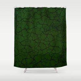 Fractus IV Shower Curtain
