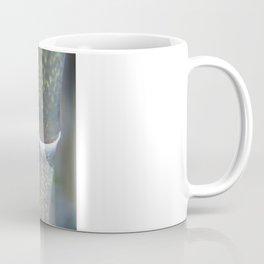 Bamboozal Coffee Mug