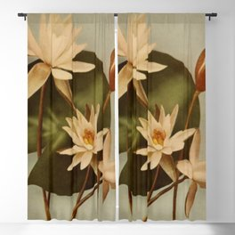 Vintage Water Lily Blackout Curtain
