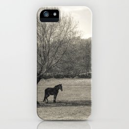 The horse and the tree iPhone Case