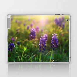 Grape Hyacinths (Muscari) Laptop & iPad Skin