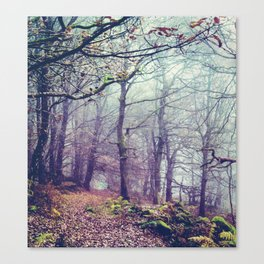 Peak District Forest Canvas Print