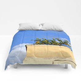 Fruits of Rome Comforters