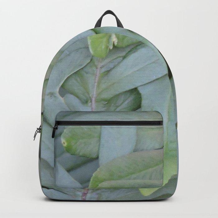 TEXTURES -- Ferns Enfolded Backpack