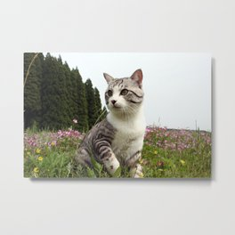 Cat was noticed coming of spring. Metal Print