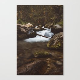 Cool & fresh - Landscape and Nature Photography Canvas Print