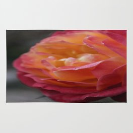 Vintage Rose Rug