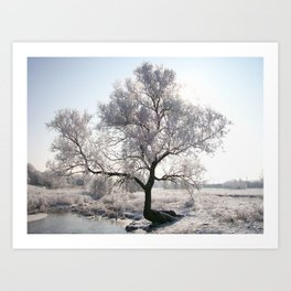 My Special Tree Art Print
