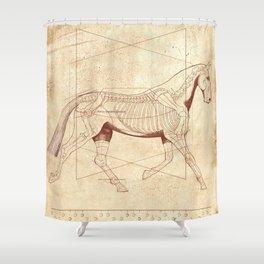 Da Vinci Horse: The Trot Revealed Shower Curtain