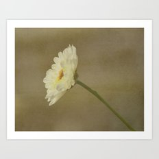 Pom Pom Flower Art Print