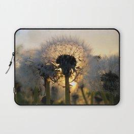 Last Light Dandelion Laptop Sleeve