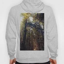 Listen to the Redwoods Hoody