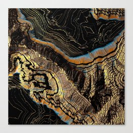 Golden Canyons Canvas Print