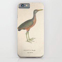 Little Wood Rail gallinula mangle iPhone Case