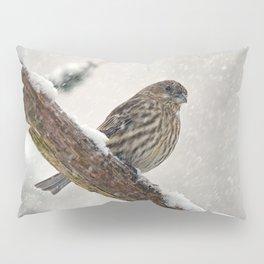 Facing the Storm (House Finch) Pillow Sham