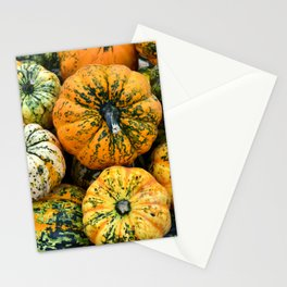 Decorative Pumpkins Stationery Cards