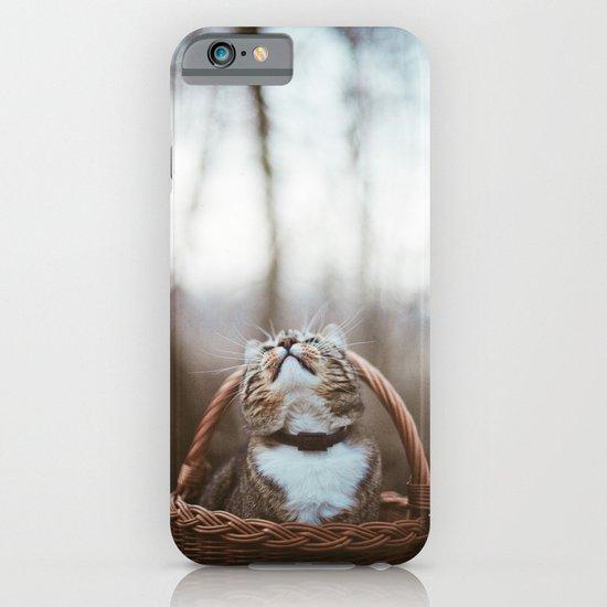 Cat in a basket iPhone & iPod Case