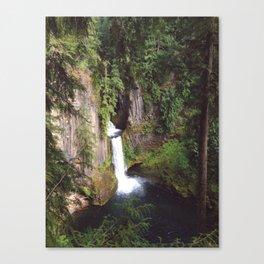 Toketee Falls Canvas Print