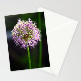 Allium Ball-shaped Onion Flower Stationery Cards