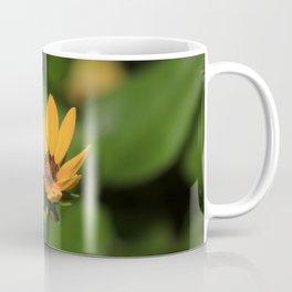 Isolated Yellow Flower Coffee Mug