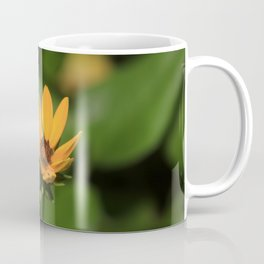 Isolated Yellow Flower Coffee Mug