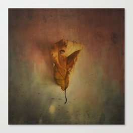 Lonely Autumn Leaf Canvas Print