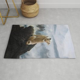 The Wanderer Above the Sea of Doge Rug