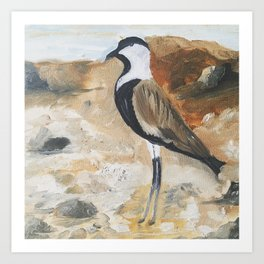 KAUST Birds Art Print